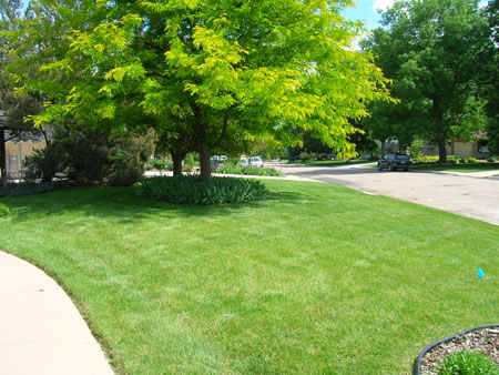 Green Touch Lawn Care